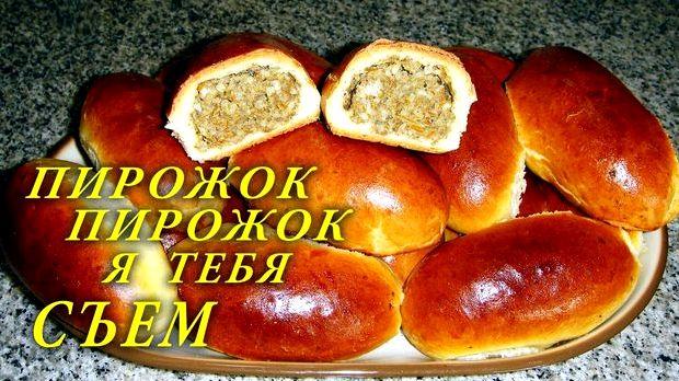 Рецепт теста для пирожков на сухих дрожжах в духовке быстрого приготовления