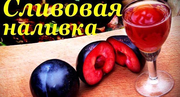 Вино в домашних условиях простой рецепт из чернослива