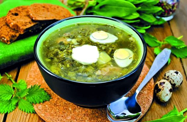 Зелёный борщ с щавелем и яйцом и курицей рецепт с фото